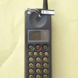 NEC P100
